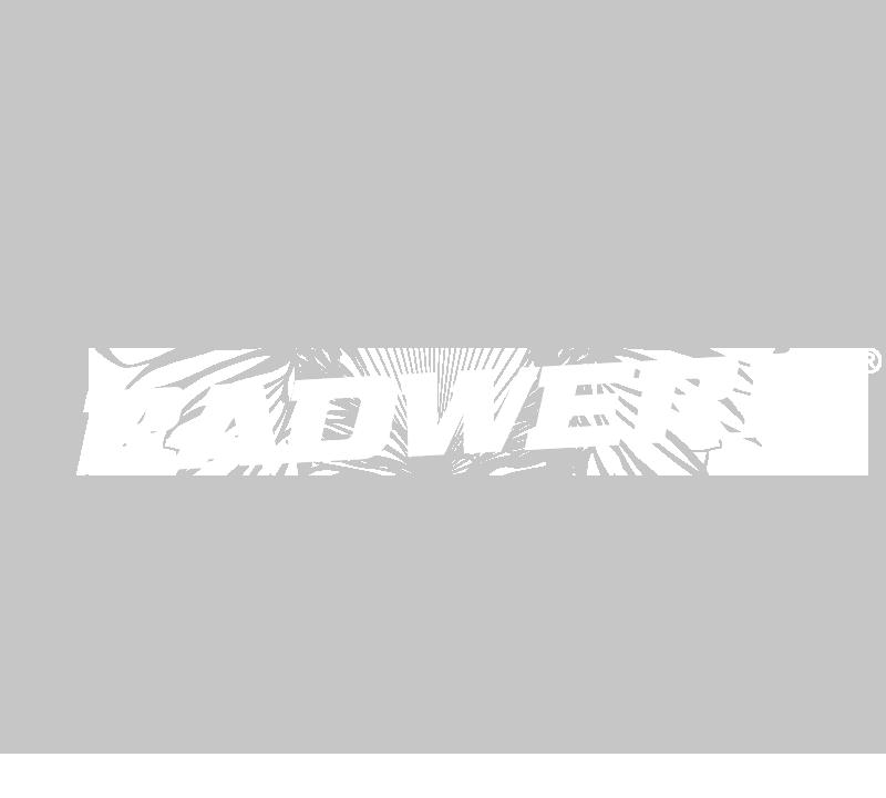 Radwerk