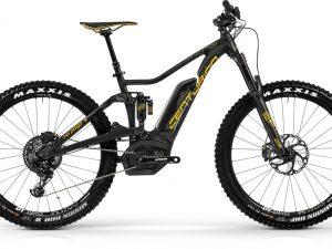 Pedelecs/ E-Bikes: MTB